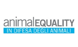 AnimalEquality