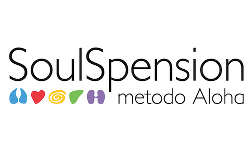 soulspension
